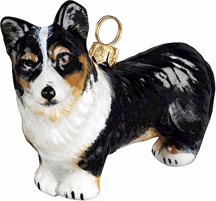 Cardigan Welsh Corgi- Tri Color