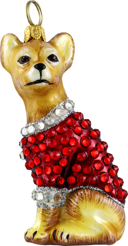 Chihuahua with crystal encrusted coat.