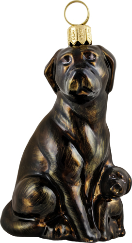 Labrador Retriever with puppy- chocolate.