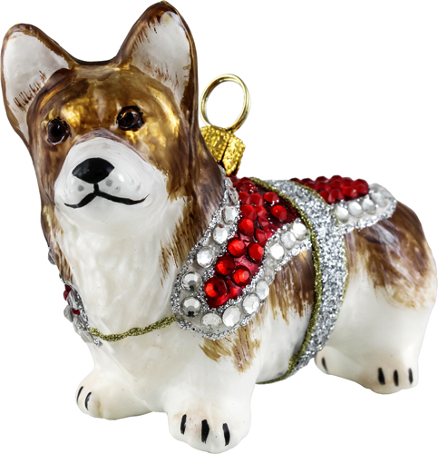 Pembroke Welsh Corgi with crystal encrusted coat.